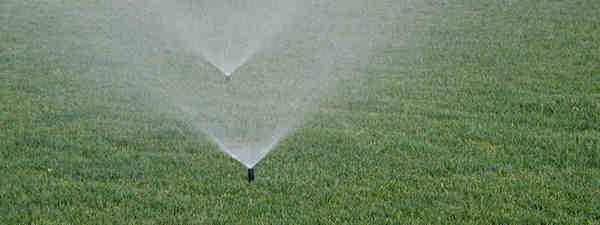 Spray Type Sprinklers Are The Type Of Sprinkler That Spray